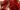 rosa di gorizia - radicchio locale